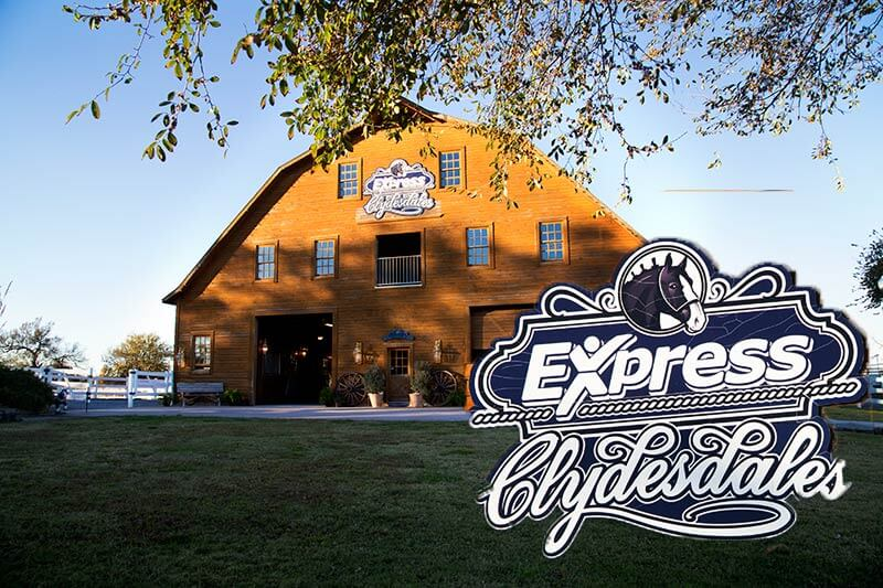 Snap Me Crazy Photo Booth at the express clydesdales in Yukon, oklahoma for a photoboot, props, social media station, unlimited prints, online gallery and video all part of our cheap photo booth rental.